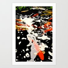 Koi Pool Art Print