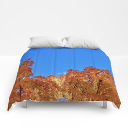 Stretched Limits Comforters