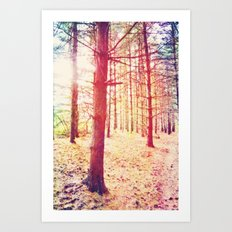 Fantasy in the Pines Art Print
