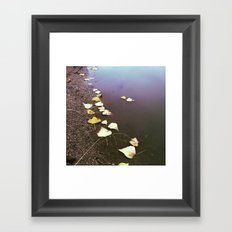 In This World Framed Art Print