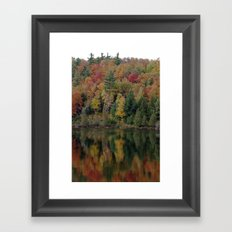 Warmth in Nature Framed Art Print