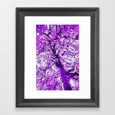The Dreamer's Tree Framed Art Print