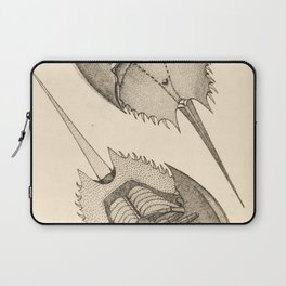 Horseshoe Crabs Laptop Sleeve