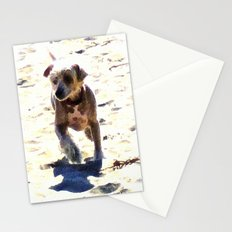 What Shall We Call Him? Stationery Cards