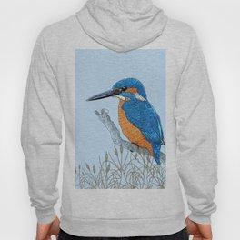 Kingfisher in reeds Hoody