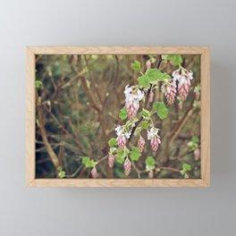 The Hanging Garden Framed Mini Art Print