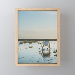 Camargue Horses XXI Framed Mini Art Print