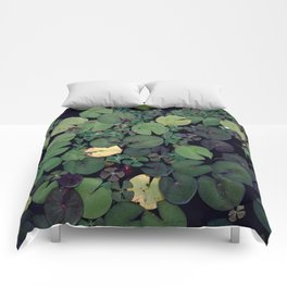 Lily Pads Comforters