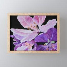 Radiance Framed Mini Art Print