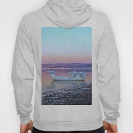 Viking Ice Ship Portrait Hoody