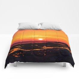 Orange Morning Comforters