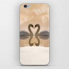 Love of swans iPhone & iPod Skin