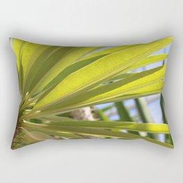 Light Coming Through Rectangular Pillow