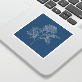 Chrysanthemum Blueprint Sticker
