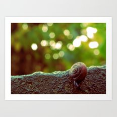 Mini Snail Art Print