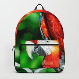 Macaw1 Backpack