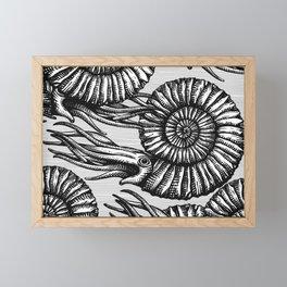 AMMONITE COLLECTION B&W Framed Mini Art Print