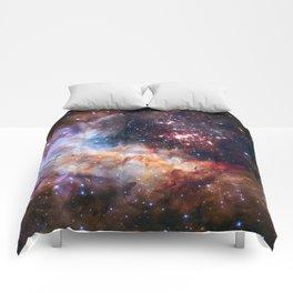 Cluster Westerlund II Comforters
