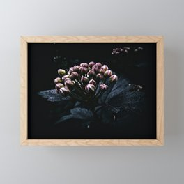 Muted at Dusk Framed Mini Art Print
