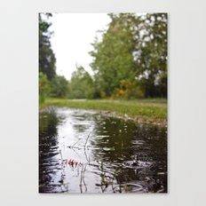 Wapato Park rain Canvas Print