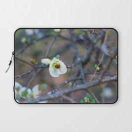 Ladybug Laptop Sleeve
