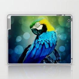Macaw on branch Laptop & iPad Skin