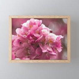 Clash of Seasons Framed Mini Art Print