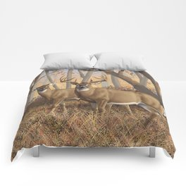 Whitetail Deer Trophy Buck and Doe in Autumn Comforters
