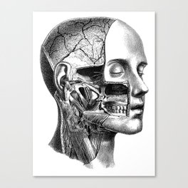 I rip your face Canvas Print