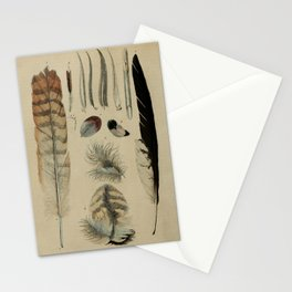 Naturalist Feathers Stationery Cards