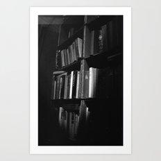 Book Case Art Print
