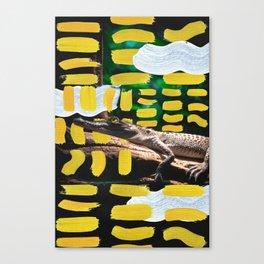 Painted Croc by Ezekiel Kitchen Canvas Print