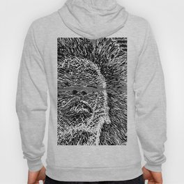Know The Line Hoody