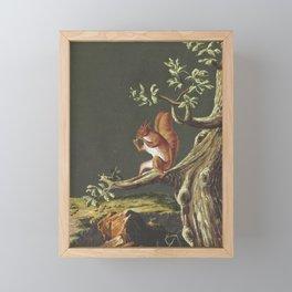 Vintage Squirrel Art, 18th Century Framed Mini Art Print