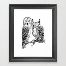 Bubo and Strix Framed Art Print