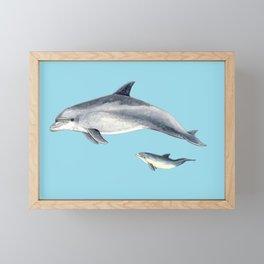 Blue Bottlenose dolphin Framed Mini Art Print