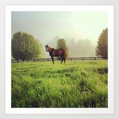 Morning Horse Art Print