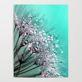 Diamond Blue Water Droplets Poster