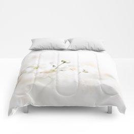 Gypsophila Comforters