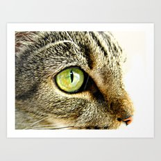 Emerald Cat Eyes Art Print