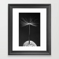 Seed Of A Dandelion Framed Art Print