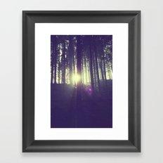 Forrest sun. Framed Art Print