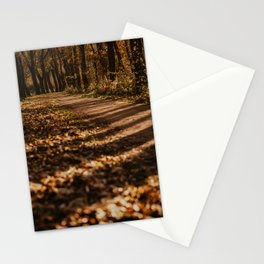 Autumn Forest Netherlands | Fine Art Travel Photography Stationery Cards