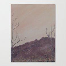Grandpa's Sky Canvas Print