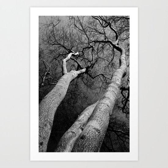 Monochrome Trees Art Print