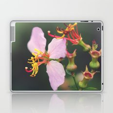 A Macro World Laptop & iPad Skin