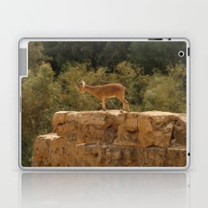 Yael Laptop & iPad Skin