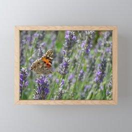 Lavender and Orange Butterfly Framed Mini Art Print