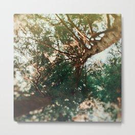 Treetops Metal Print