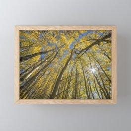 Sparkling Autumn 2 Framed Mini Art Print